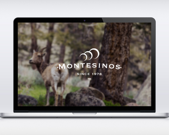 Montesinos Website